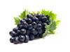 červená vína BIB 20 l